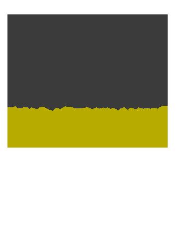 GZ_LOCAL_santiago2